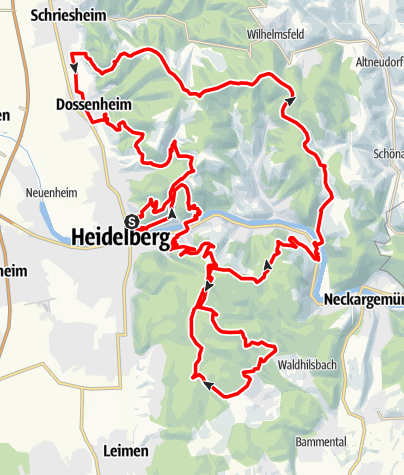 Karte / Neuenheim-Neuenheim