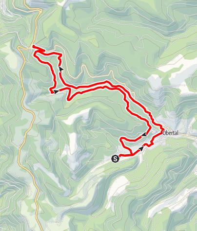 Karte / buhlbach -> ruhestein -> buhlbach (rundtour)