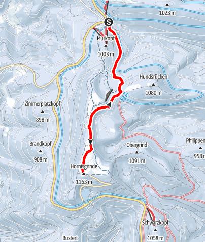 Karte / Schneeschuhtour auf die Hornisgrinde und zurück