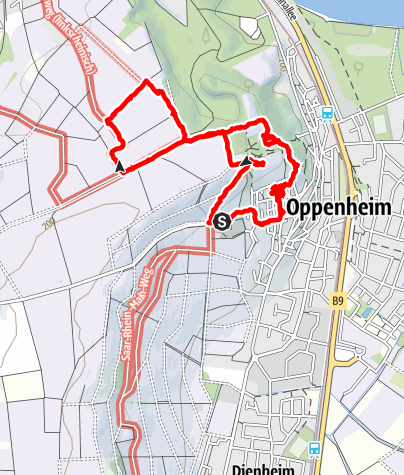 Karte / Kurzwanderung Oppenheim