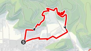 Karte / Waldlehrpfad – Schöner Wanderweg Runde von Holzhausen