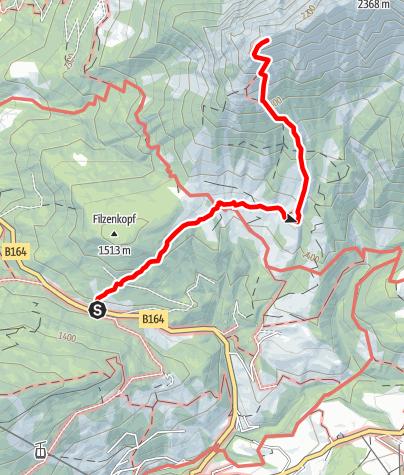 Karte / Pichlalm-Lauskopf