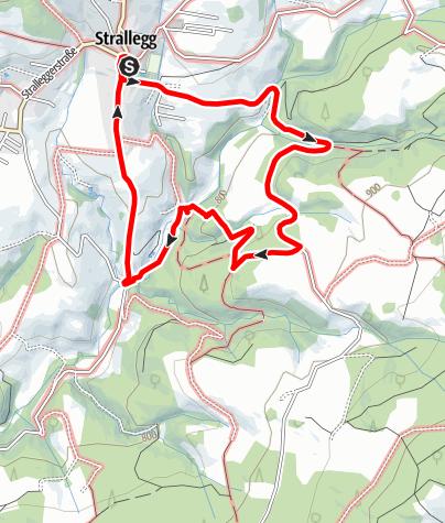 Karte / Strallegg Lechner Graben - Wildbachlweg